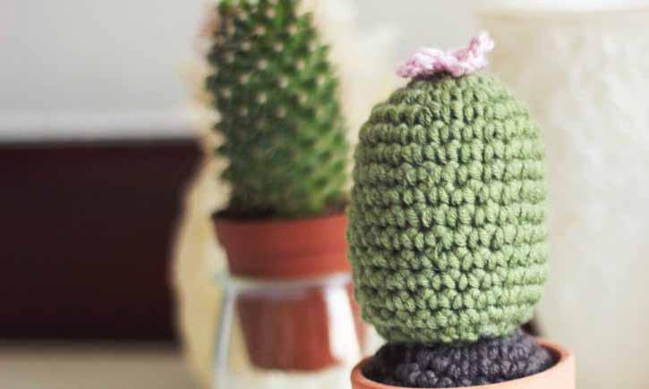 Regala un cactus de crochet para San Valentín | CrochetyAmigurumis.com | 435x725