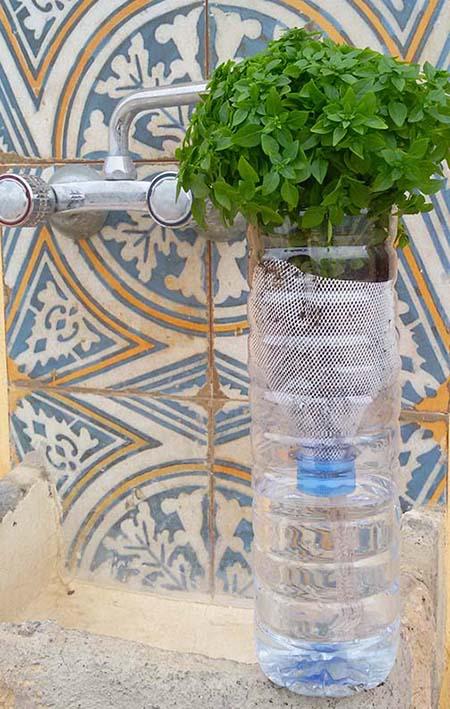 Reciclar una botella en macetero de autorriego - Macetas con autorriego ...